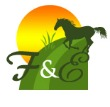 Crowdsourcing: A Fun and Affordable Way to Get A Great Logo Designed for Your Horse Business
