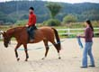 Replay - Equestrian Professional Master Class: Building Successful Lesson and Camp Programs