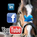Webinar Replay: Smart Social Media for Horse Professionals 2014