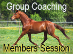 Members Only Group Coaching Session: Smart Horse Business Action Steps 2015