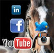 WEBINAR Replay: Smart Social Media for Horse Professional 2015