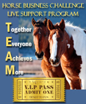 Entry Form and Details for our 2016 Horse Business Challenge Support Program