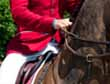 Rider Promotion - Taking A Hold of the Reins That Shape Your Career