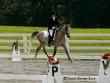 Equestrian Professional Member Spotlight - Dawn Jones-Low of Faerie Court Farm