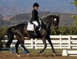 Equestrian Professional Member Spotlight - Gina Duran of Topline Training