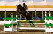 Equestrian Professional Member Spotlight - Mark Farndale of Farndale Stables