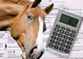 10 Tax Tips for Horse Professionals