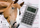 Members Only Group Coaching Session: Taxes and the Horse Business - The Inside Story