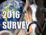 HORSE BUSINESS SURVEY! Equestrian Professionals: We Need Your Help Rethinking the Horse Business