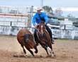 Equestrian Professional Member Spotlight - David Manchon and Sophie Houlihan of Flex Training Pty Ltd