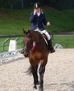 Private Equestrian Business Consulting